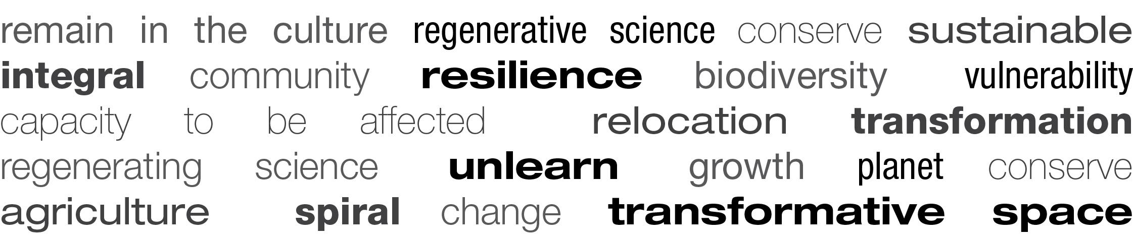 brainstorming permaculture
