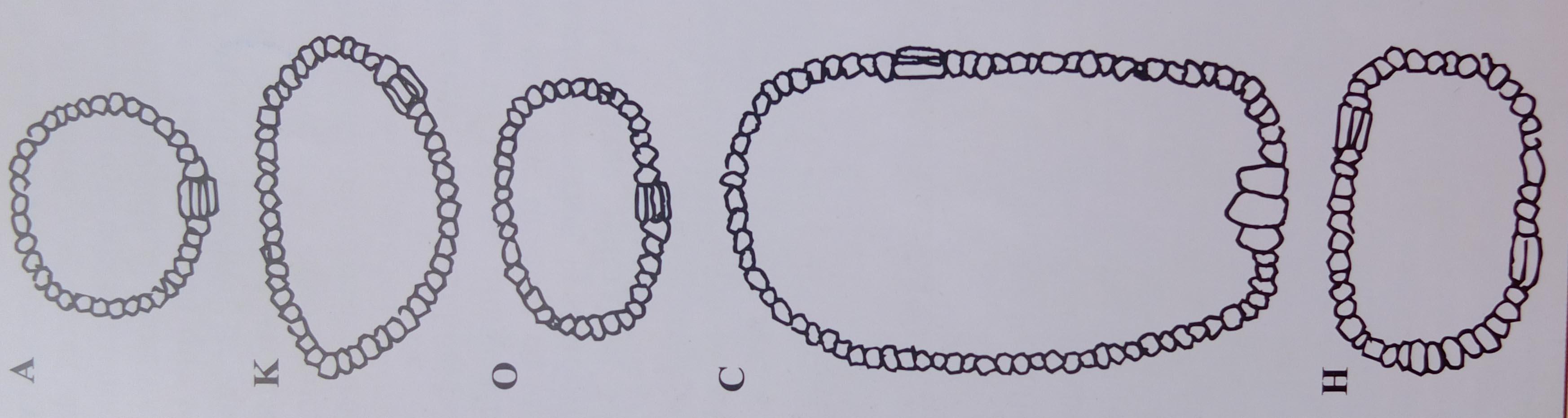 formas de los anillos